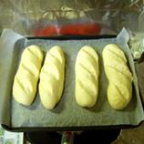 パン36 粉150g 2次発酵後 鍋2*45 8.9x.jpg