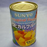 缶 トロピカルフルーツ *45.jpg